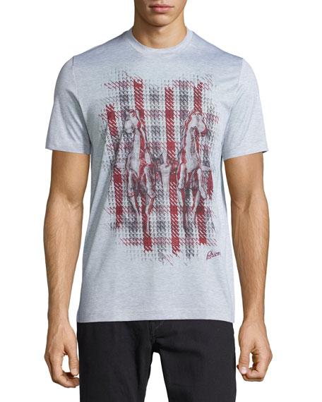 Brioni Short-Sleeve Printed T-Shirt, Silver