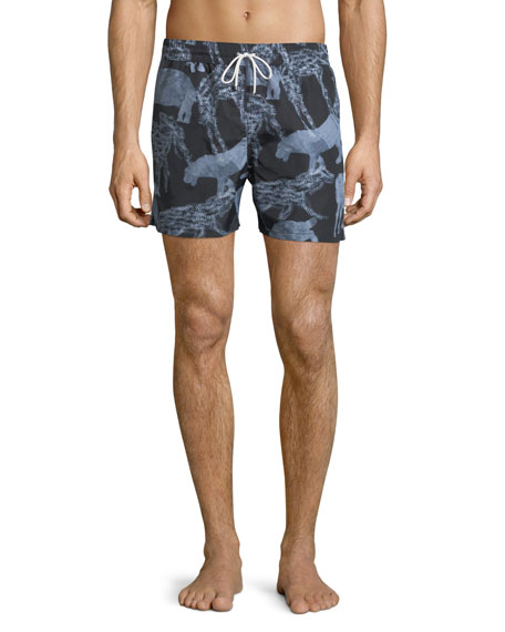 Salvatore Ferragamo Safari Animals Swim Trunks