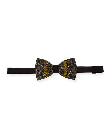 Arroyo Feather Formal Bow Tie