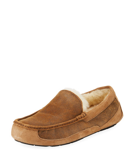 UGG Ascot Men's Suede Slipper, Bomber Brown