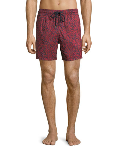 Men's Mini Fishes Swim Trunks