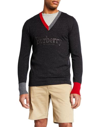 Men's Logo-Embroidered V-Neck Sweater