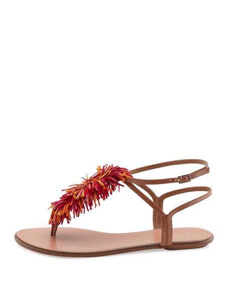 Wild Thing T-Strap Flat Sandal, Multi