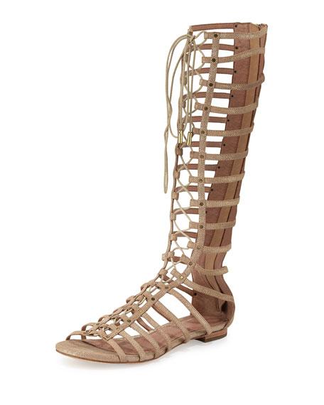 Joie Falicia Tall Gladiator Sandal, Saglia