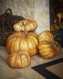 Park Hill Collections Decorative Autumn Pumkins