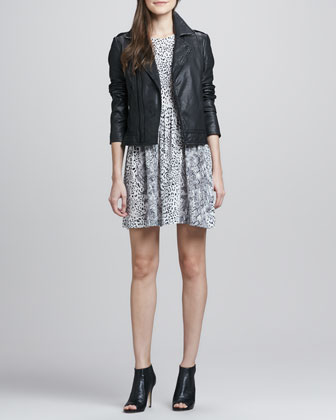 Caldine Leather Motorcycle Jacket & Bernadine Leopard-Print Dress