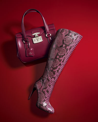 Gucci Leather Handbag & Python Boot