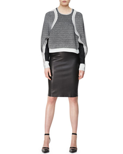 Helmut Lang Converging Panels Pullover & Stretch Leather Pencil Skirt