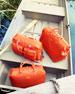 Tangerine Luggage