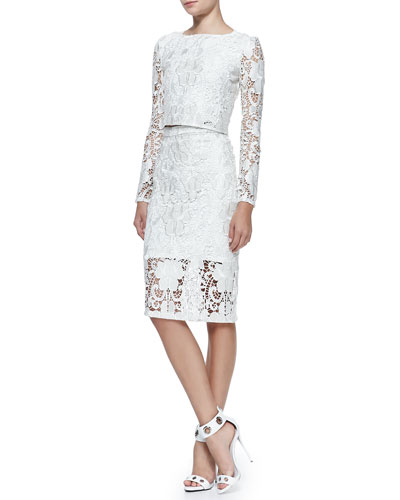 Alexis Laiden Embroidered-Lace Cropped Top & Larissa Embroidered-Lace Pencil Skirt