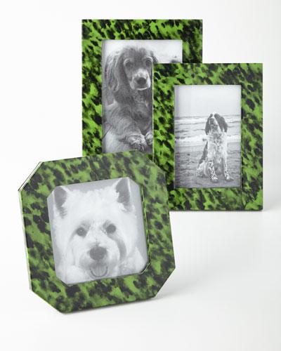 Emerald Tortoise Frames