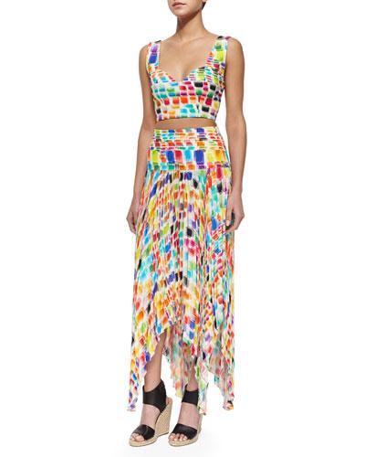 Ayden Printed Sleeveless Crop Top & Gustav Printed Pleated Uneven Skirt