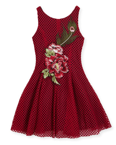 Rosie Netted Fit-and-Flare Dress, Size 4-6X and Matching Items
