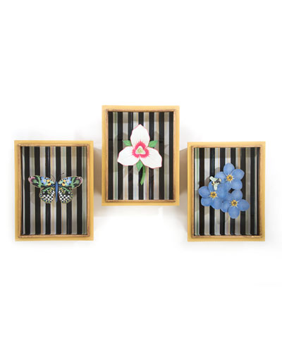 Butterfly Shadow Box  and Matching Items