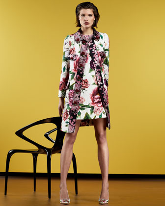 PreFall Collections