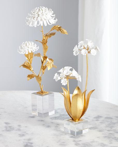 John-Richard Collection Avignon Chrysanthemums