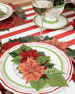 Hester & Cook Poinsettia Paper Table Setting Decor Collection