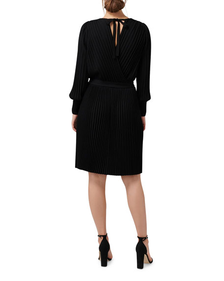 Image 3 of 4: Ever New Cindy Long-Sleeve Pleat Dress