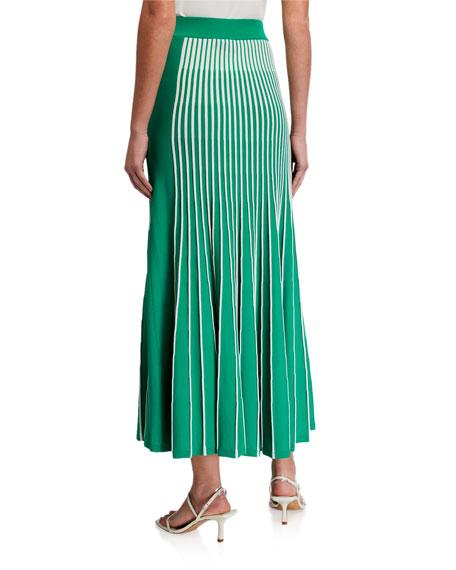 Alexis Vani Striped Pleated Skirt