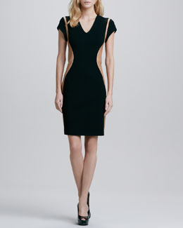 Diane von Furstenberg Dayton Leather-Panel Dress