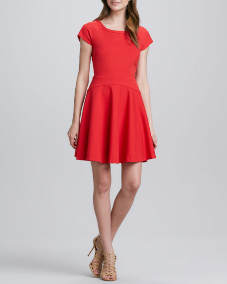 Delyse Full-Skirt Dress