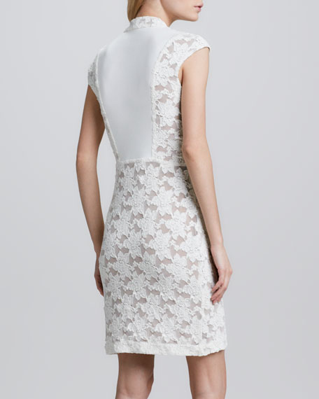Formfitting Lace Dress