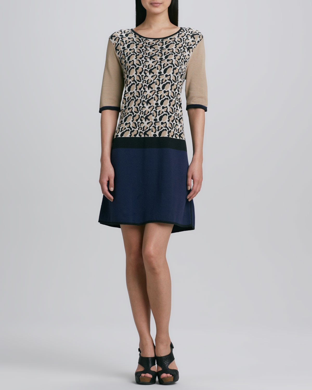 Animal-Print Colorblock Dress