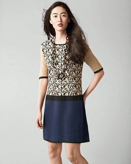 Animal-Print Colorblock Dress, Petite