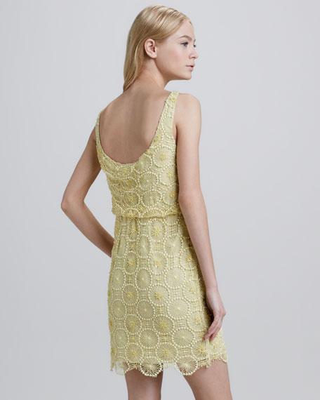 Gabby Lace Blouson Dress