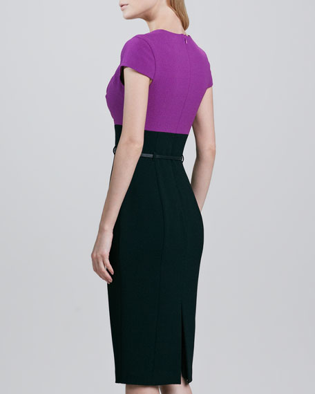Virtue Colorblock Belted Dress