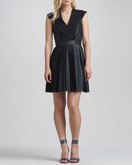 Solar Pleated-Skirt Dress