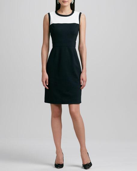 janelle sleeveless two-tone dress