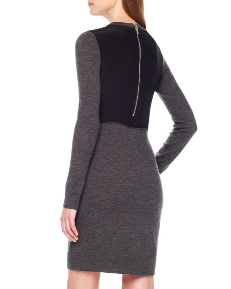 Back-Panel Fitted Dress