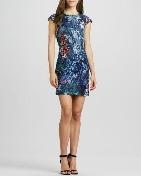 Jewel-Neck Lace-Print Dress