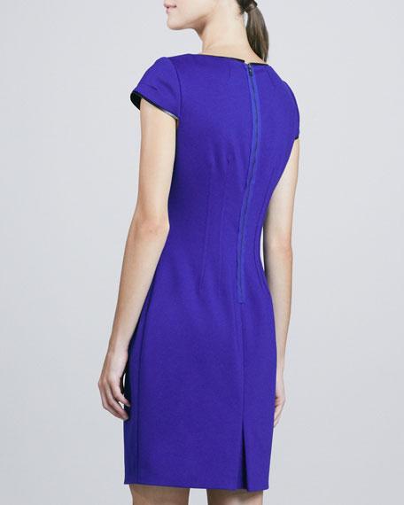 Skylar Princess-Seam Sheath Dress