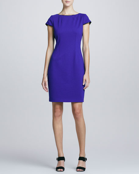 Skylar Princess-Seam Sheath Dress