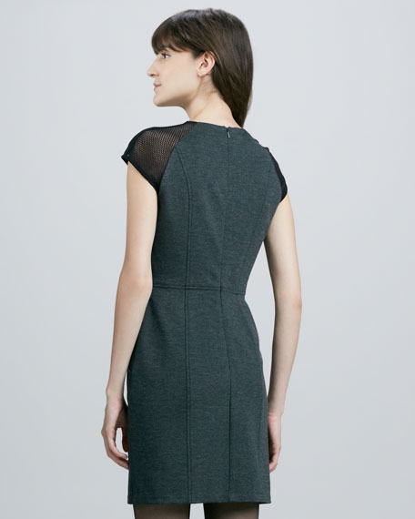 Tahmira Mesh-Sleeve Ponte Dress