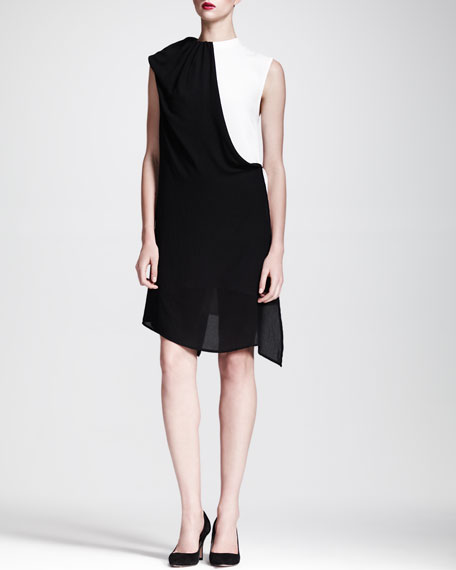 Goodwin Two-Tone Sleeveless Dress