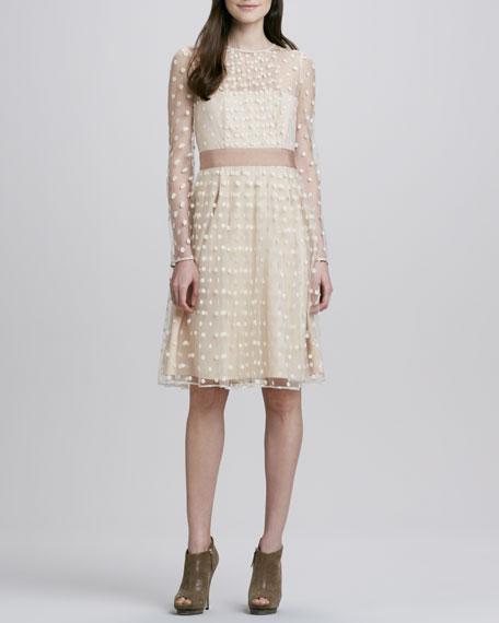 Celia Dotted Sheer Long-Sleeve Dress