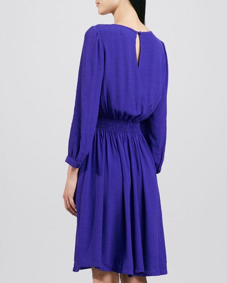 zari dress with shirred waist