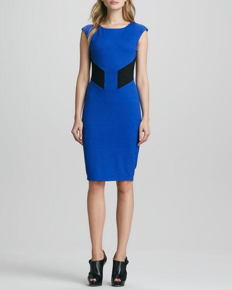 Biotech Colorblock Dress