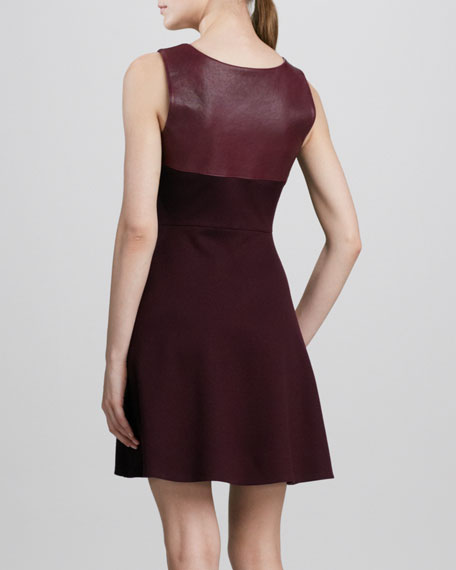 Desdemona's Smile Dress with Faux-Leather Trim