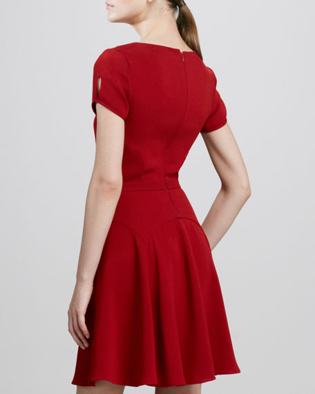Raizel Fit-and-Flare Dress