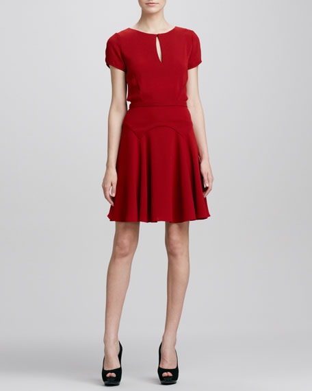 Raizel Fit-and-Flare Dress