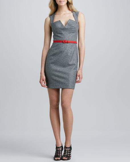 Laurence Cheetah-Print Dress