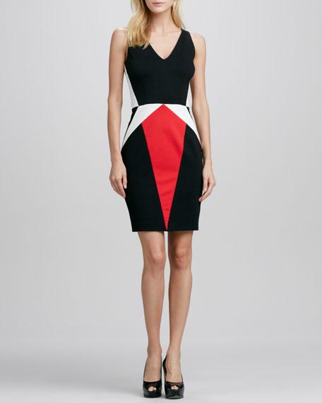 Julie Sleeveless Colorblock Dress