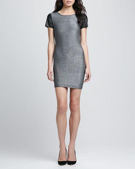 Tory Metallic Leather-Sleeve Dress