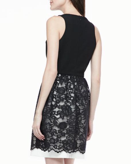 Sophie Lace-Skirt Dress