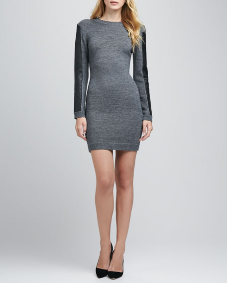 Dree Leather-Trim Knit Dress