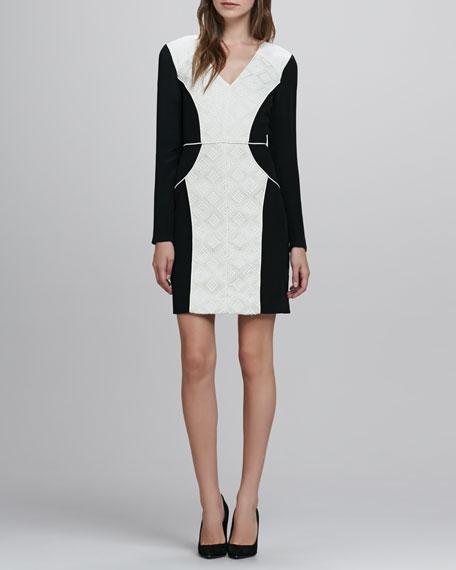 Embroidered Jacquard V-Neck Dress